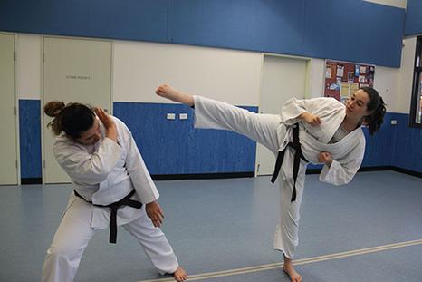 Shorinjiryu Karate